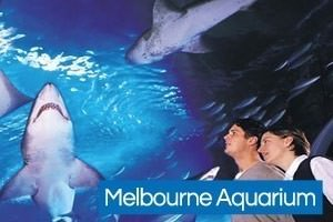 Kids attractions in Melbourne