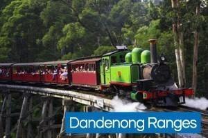 Puffing Billy Train Dandenongs