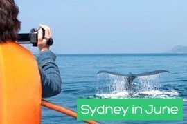 Sydney in June