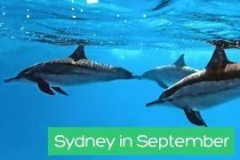 Sydney in September