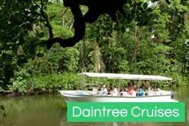 Daintree River Cruises