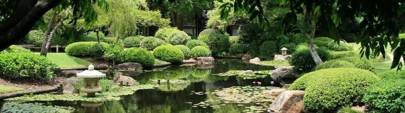 Mt Coot Tha Botanic Gardens