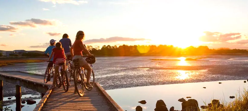 Hawkes Bay Cycling Tours