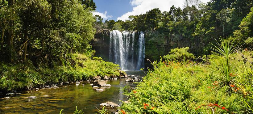 Rainbow Falls Bay of Islands