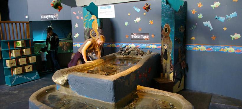 EcoWorld Picton Aquarium
