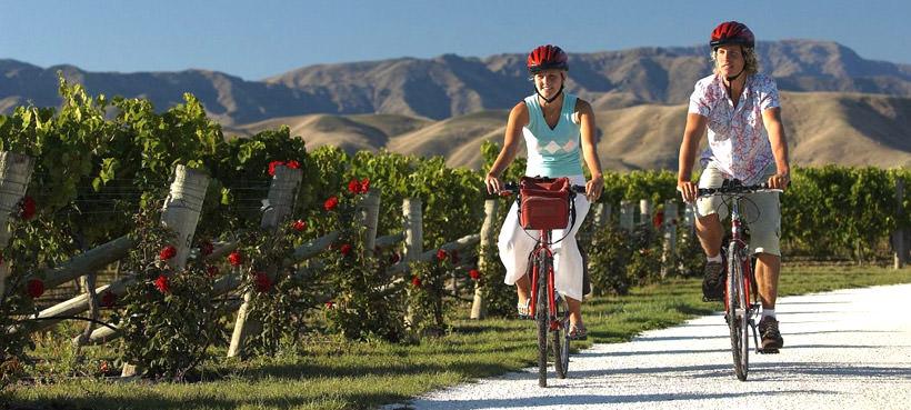 Winery Tours Marlborough