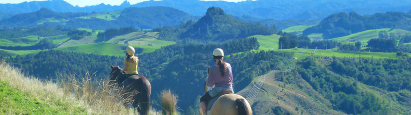Rangihau Ranch Horse Riding Coromandel