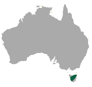 Tasmanian Devil Map