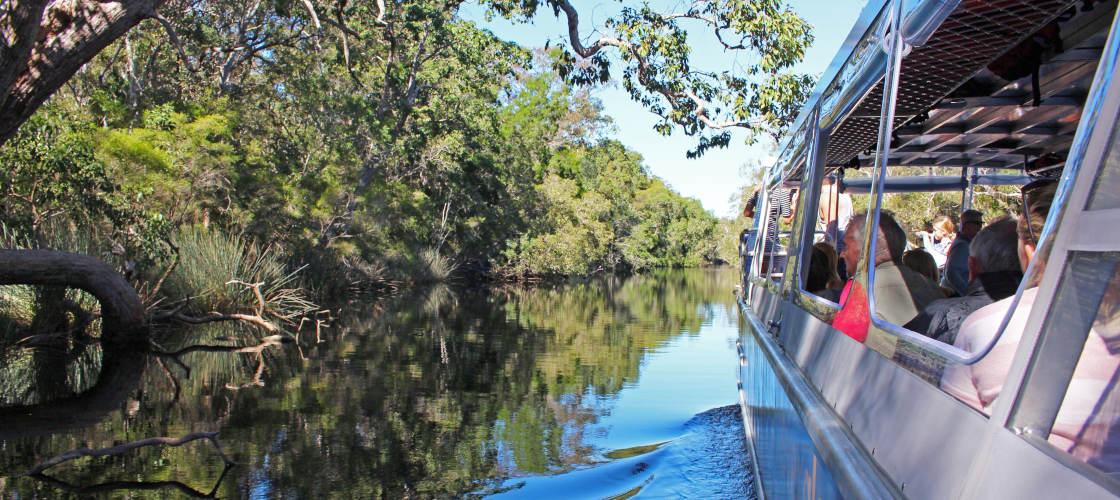 Noosa Everglades Eco Safaris