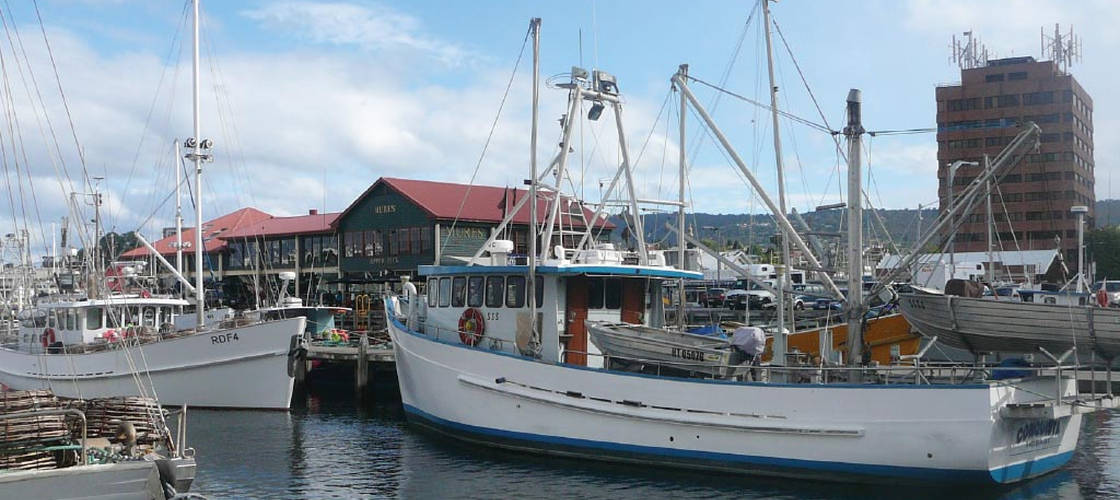 Sightseeing Day Tours Hobart