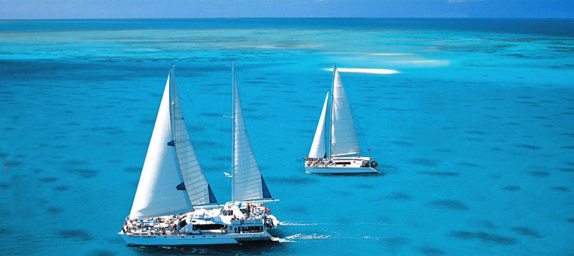 Top 10 things to do in Cairns Michaelmas Cay Cruise