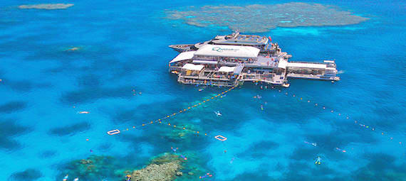 Great Barrier Reef Cruise with Quicksilver