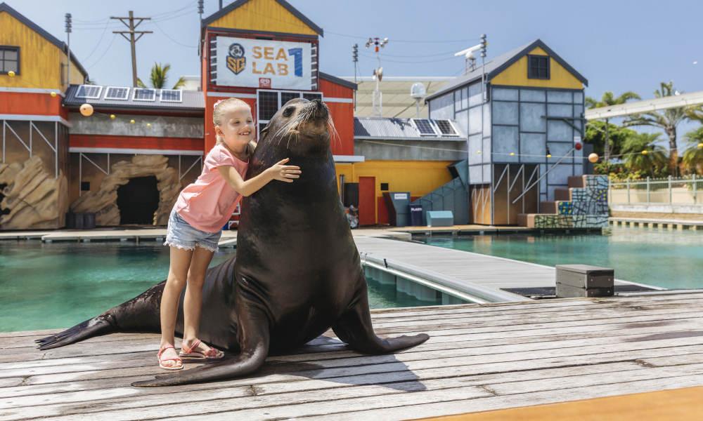 seal encounter sea world