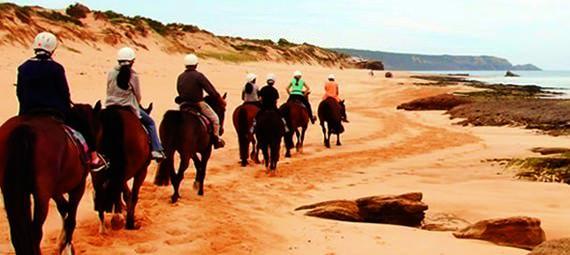 Horse Trail Rides Mornington Peninsula