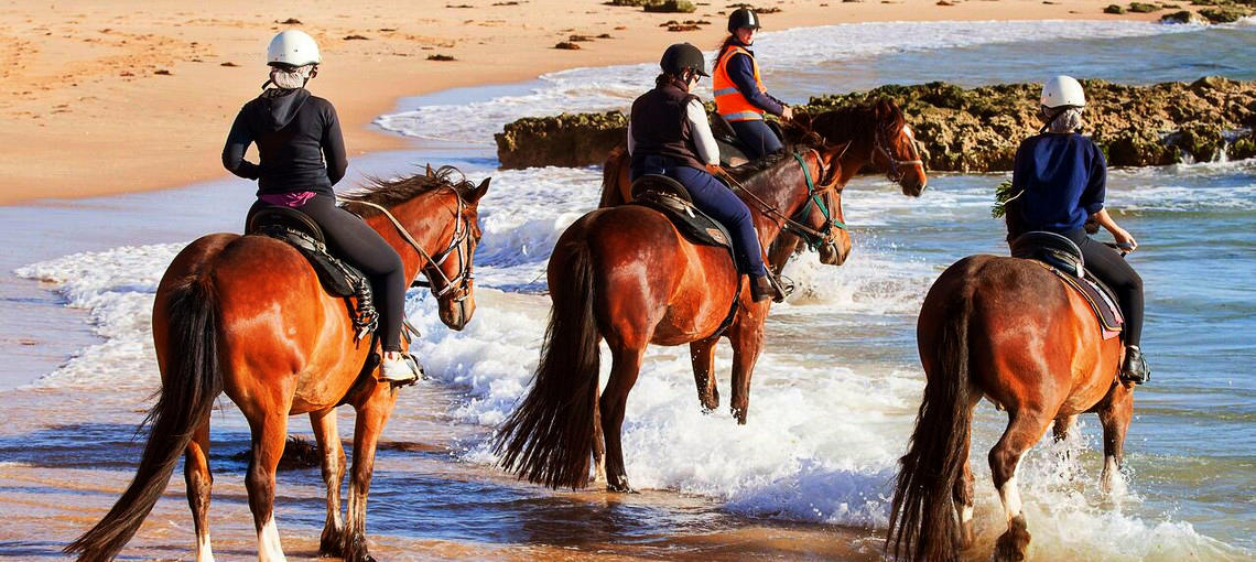 Horse Riding Mornington Peninsula