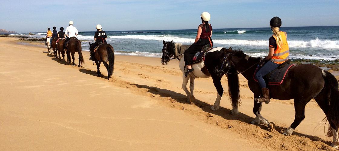 Horse Rides Melbourne