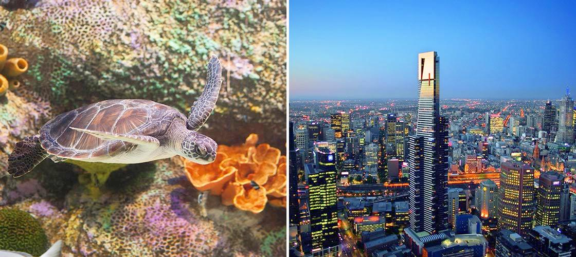 Eureka Skydeck and SEA LIFE Melbourne Aquarium