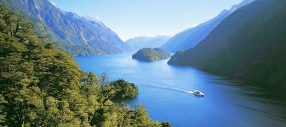 Traverse the waters and inlets on a Doubtful Sound day cruise