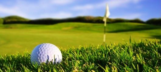 Buy Palmer Colonial golf gift vouchers online from Gift It Now