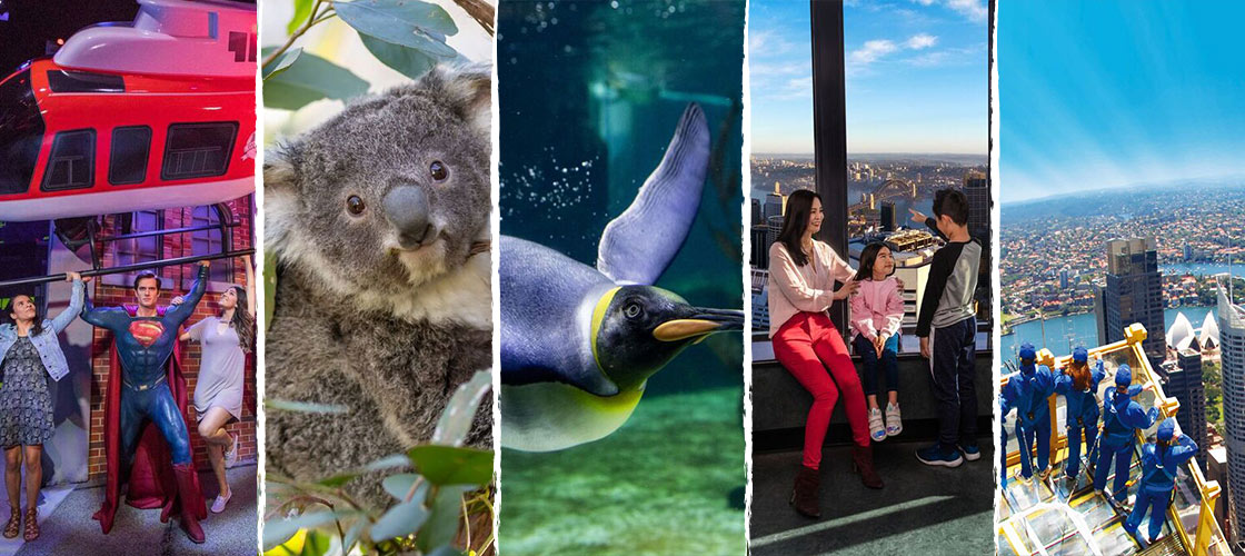 sydney attraction entry and skywalk package