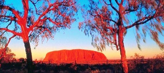 Uluru Sunrise Tour with Guided Cultural Walk