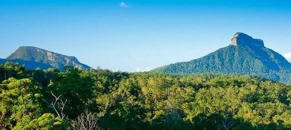 Explore the Byron Bay Hinterland