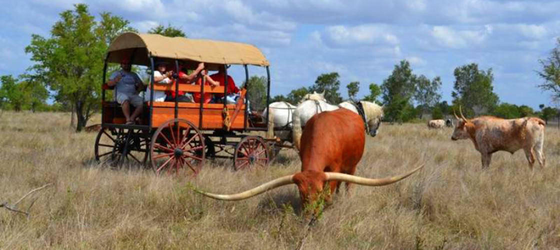 Texas Longhorns at Charters Towers