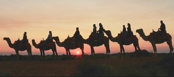 Ayers Rock Sunset Camel Ride