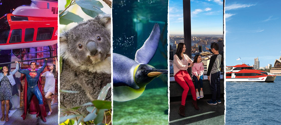 Sydney attraction and harbour ferry package