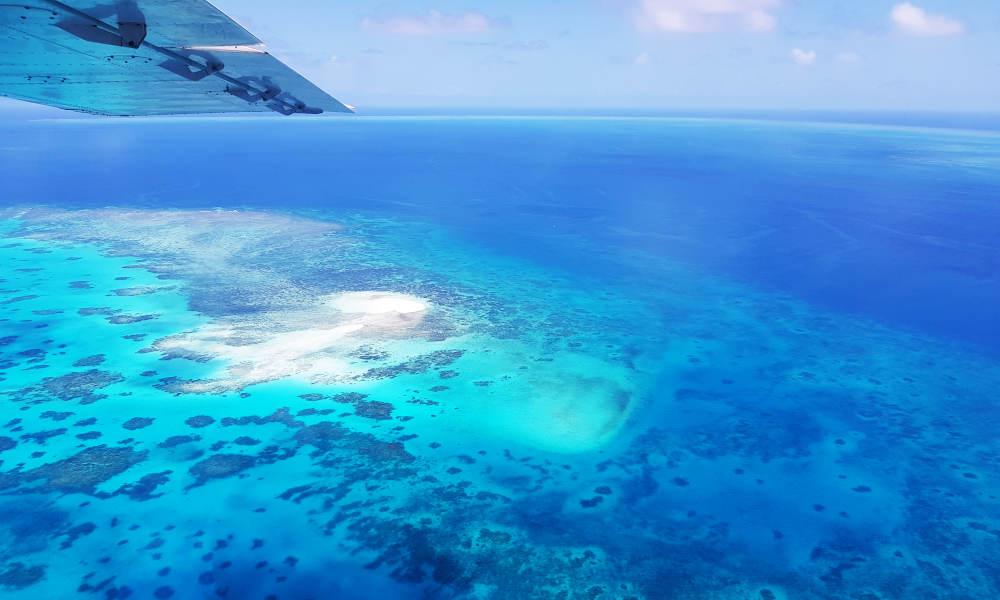 GSL Aviation  Cairns Great Barrier Reef ocean views