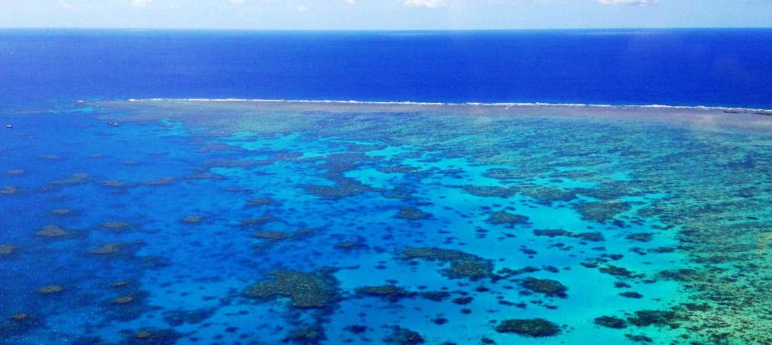 cairns gsl aviation great barrier reef scenic flight