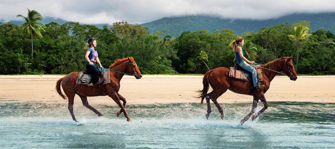 Beach and Trail Horse Riding