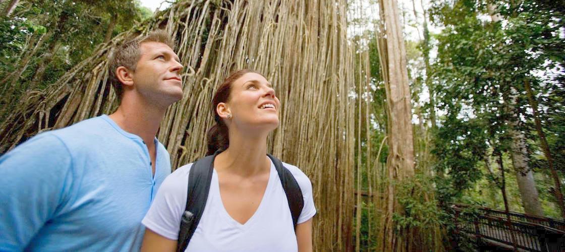 cairns gourmet tour hinterland
