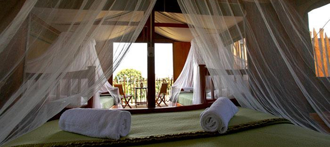 Accommodation at  Zoo Slumber Safari