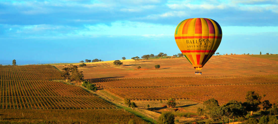 Barossa Valley ballooning including breakfast and wine