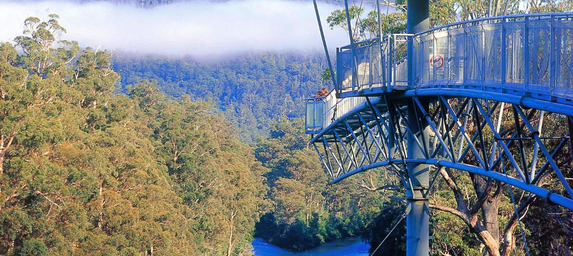 AirWalk Tasmania