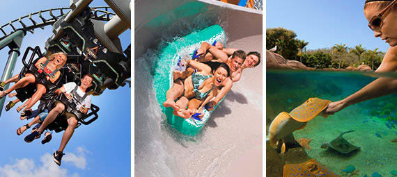 Unlimited Entry to Sea World Movie World and Wet n Wild for 7 Days