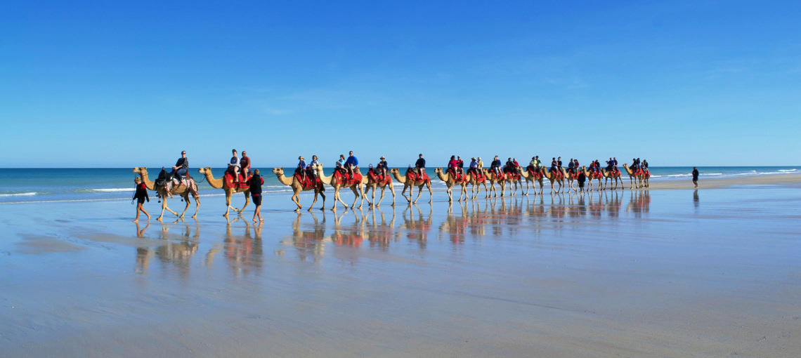 Camel procession along the beach