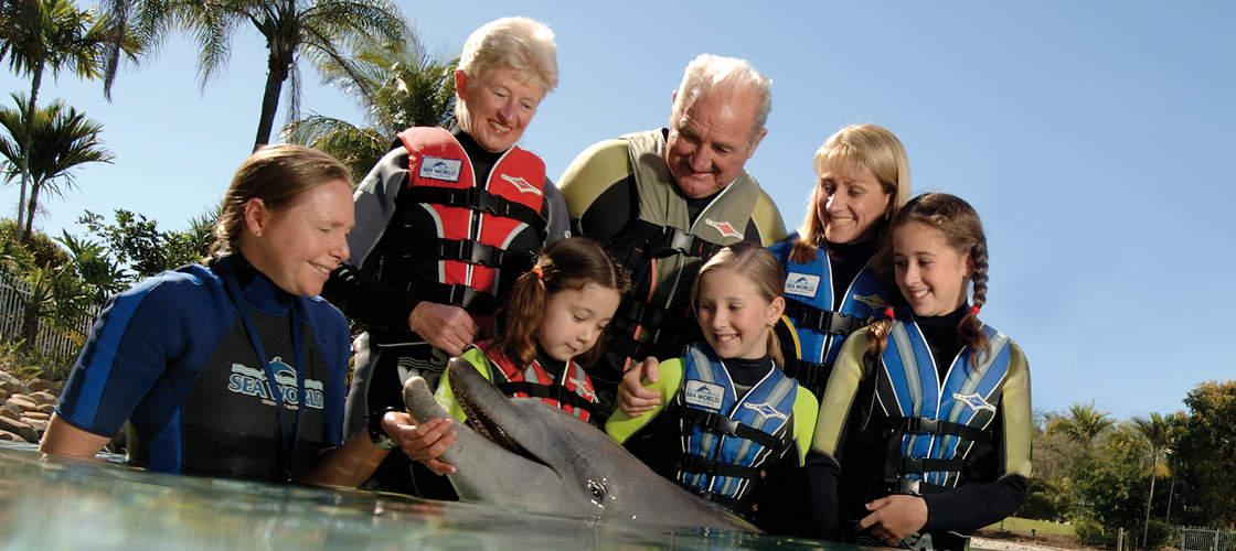 Family Dolphin Encounter
