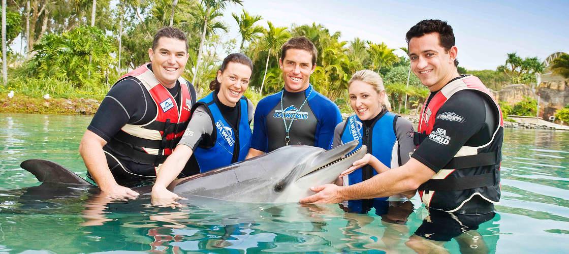 Sea World Dolphin Encounter