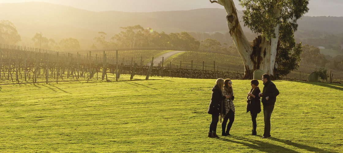 Hahndorf and Hills Hop On Hop Off Tours
