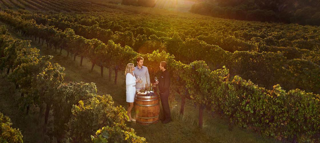 Wine tours Margret River