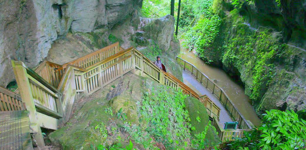 Free Things To Do  Mangapohue Natural Bridge Walk