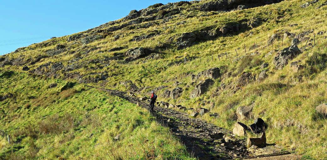 Bridle Path Walk