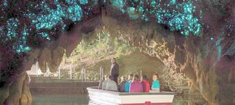 Waitomo Glowworm Caves and Ruakuri Cave Combo Thumbnail 4