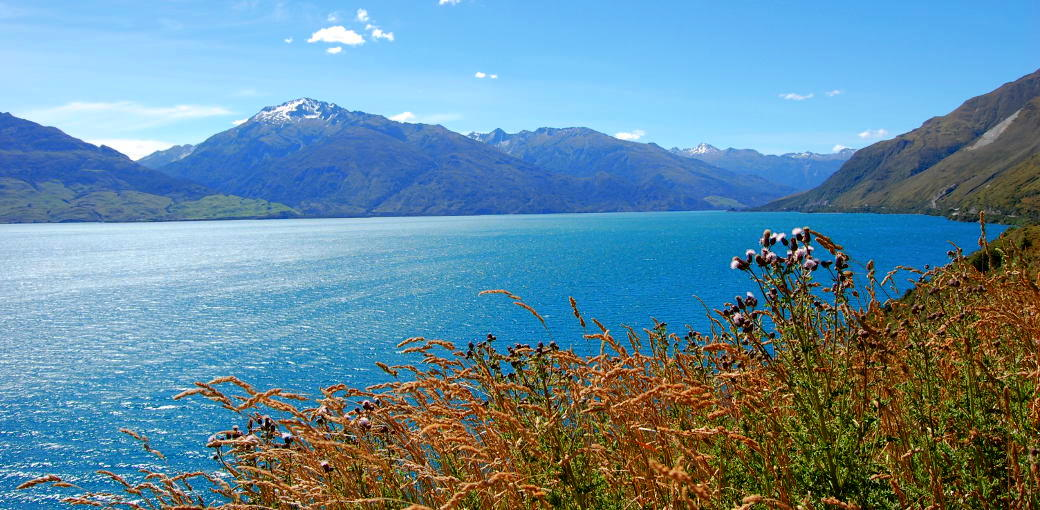 Free Things To Do  Lake Wanaka