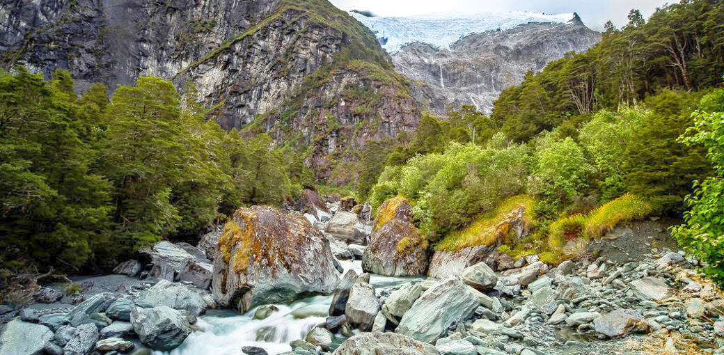 Free Things To Do  Rob Roy Glacier Track