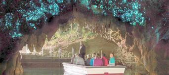 Waitomo Glowworm Caves and Aranui Cave Thumbnail 4