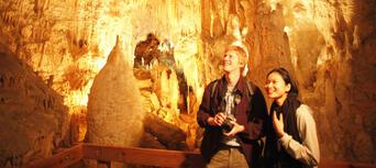 Triple Cave Combo Thumbnail 3