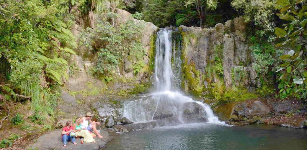 Waiau Falls & Kauri Grove Lookout